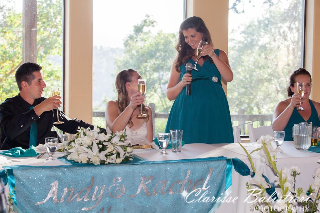 6-12-16 Rachel -Andy Wedding-454