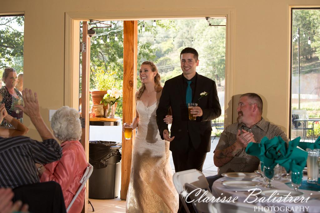 6-12-16 Rachel -Andy Wedding-423