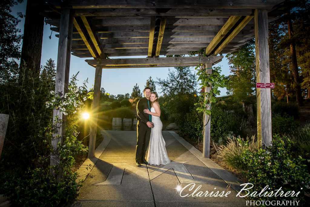 6-12-16 Rachel -Andy Wedding-564