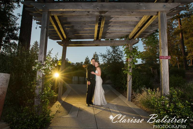 6-12-16 Rachel -Andy Wedding-563