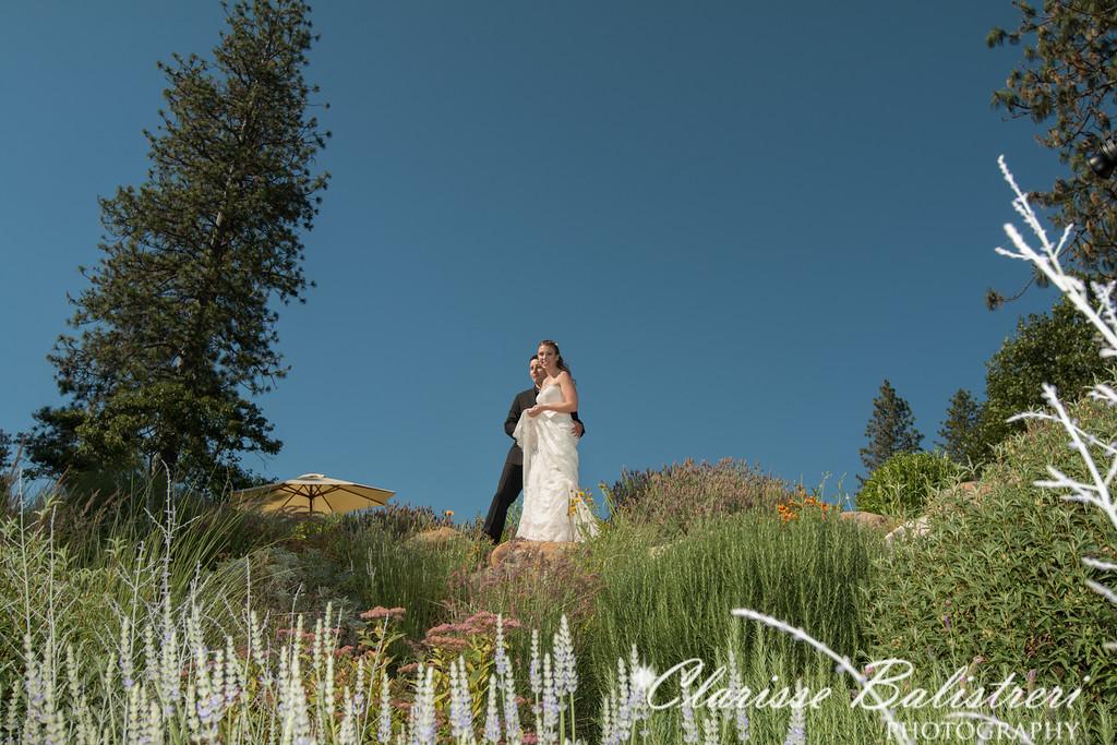 6-12-16 Rachel -Andy Wedding-345
