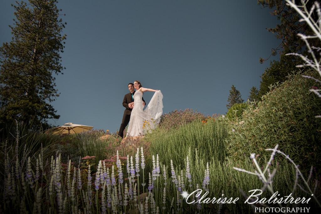 6-12-16 Rachel -Andy Wedding-343