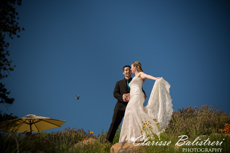 6-12-16 Rachel -Andy Wedding-341