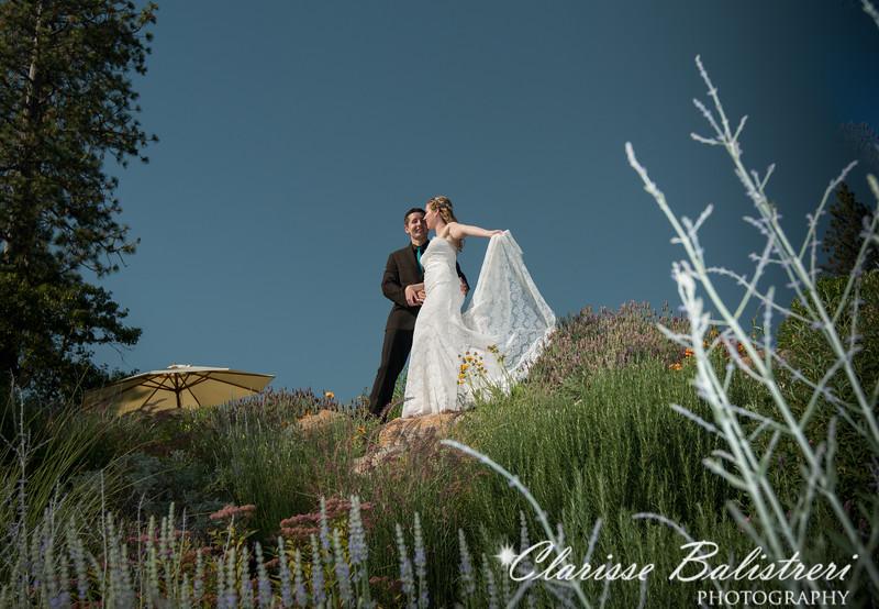 6-12-16 Rachel -Andy Wedding-342
