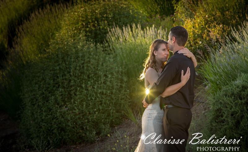 6-12-16 Rachel -Andy Wedding-554