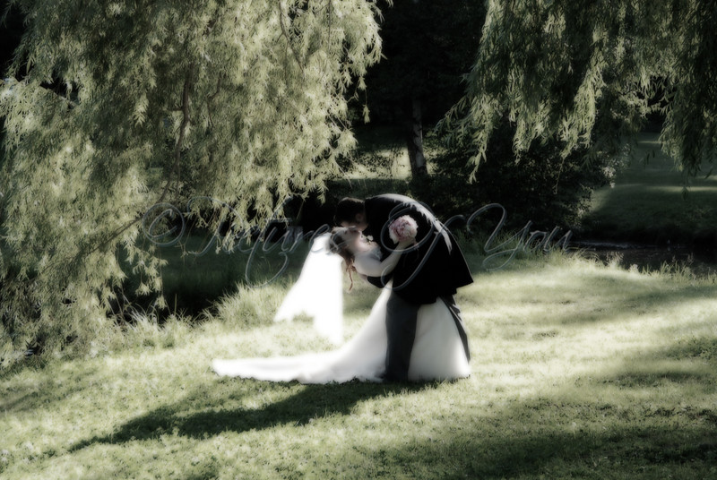 Kissing Under the Willow Trees