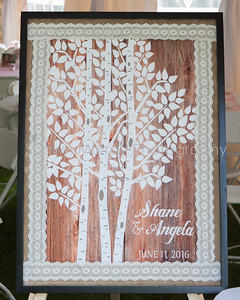 0027_Details_Angela-Shane-Wedding_060116