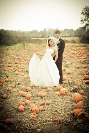 bridal portrait in pumpkin patch