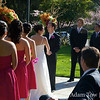The wedding party during the ceremony