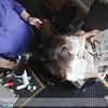 Galveston-Wedding-Annie-and-Jared-2011-041