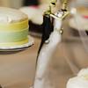 Galveston-Wedding-Annie-and-Jared-2011-486