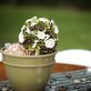 April_Wedding_20090815_284