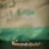 Ashley-Wedding-02202010-034