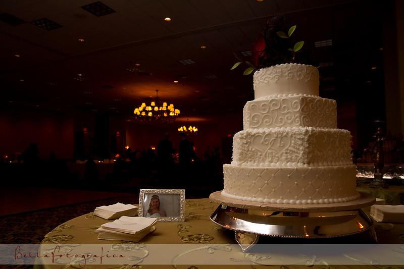 Ashley-Wedding-02202010-401