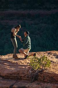 Mat and Ashley Proposal-8