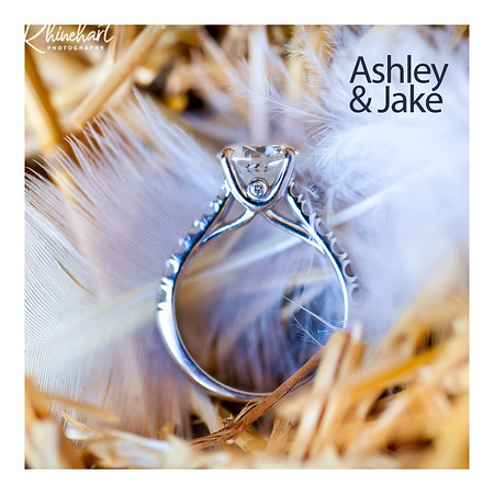Ashley & Jake: Guest Book Option 1