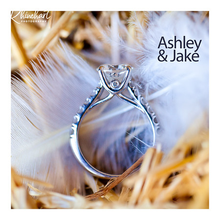 Ashley & Jake: Guestbook Option 2