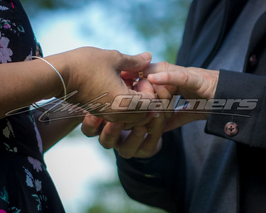Babeu Wedding 7.16.17