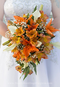 Fall colors, variety of lilies in a cascading style
