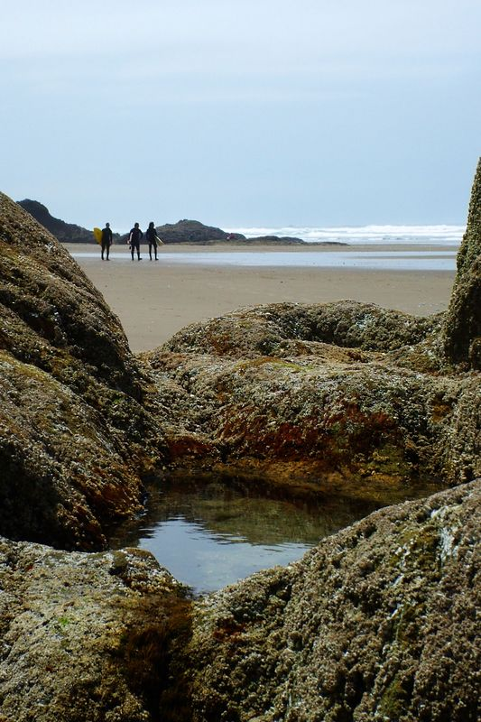 Tide pools and surfers at Hug Point