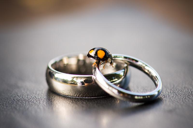 39-beth_ric_portishead_wedding