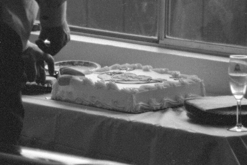 Wedding Cake Slicing in 3200 T-Max Vision