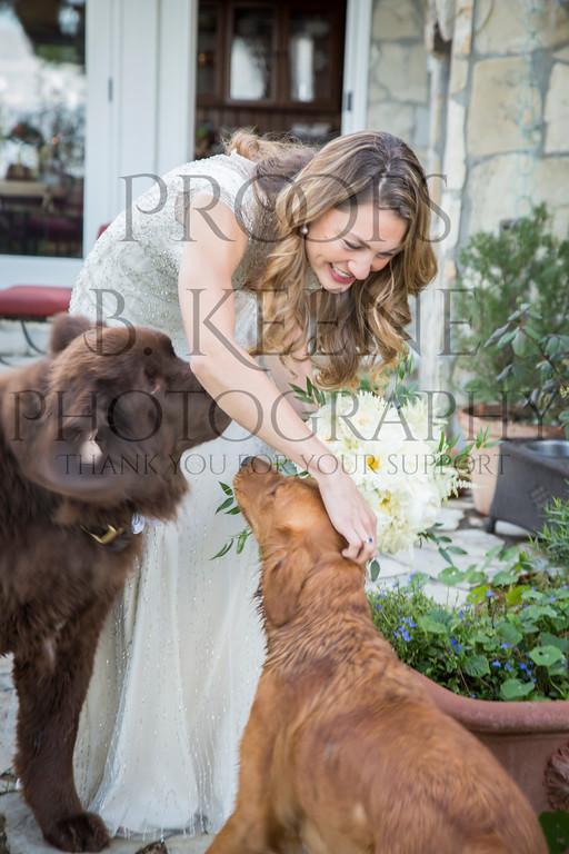 HOFMAN_WEDDING2_2014_BKEENEPHOTO-18