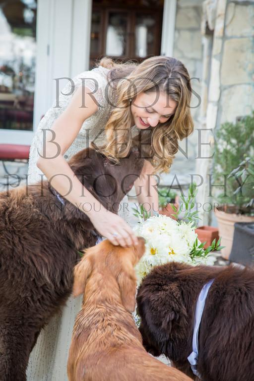 HOFMAN_WEDDING2_2014_BKEENEPHOTO-19