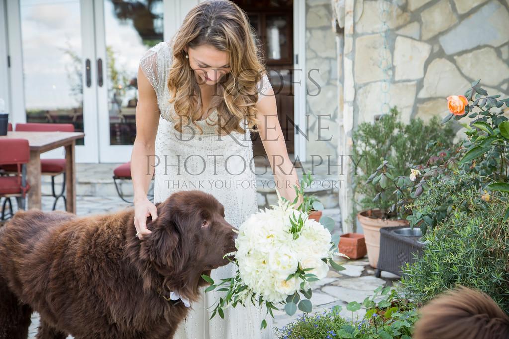 HOFMAN_WEDDING2_2014_BKEENEPHOTO-15