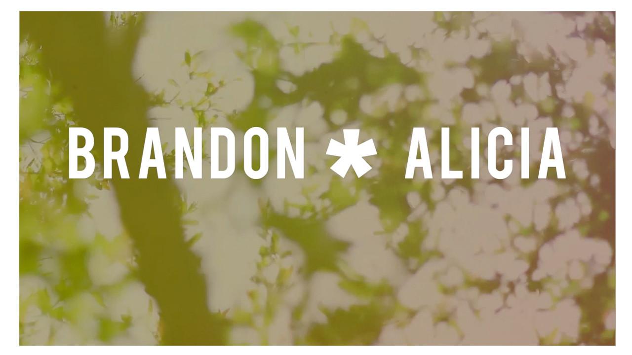 Brandon and Alicia's Wedding Video