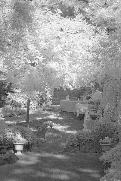 Buffet Tables II<br /> Infrared photography