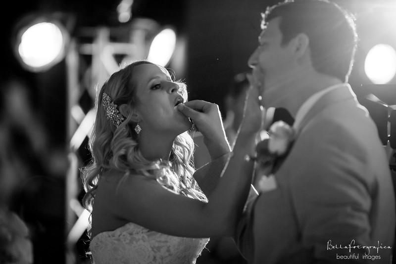 Briana-Trace-Wedding-2016-338