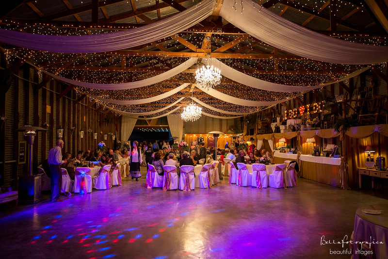 Briana-Trace-Wedding-2016-311