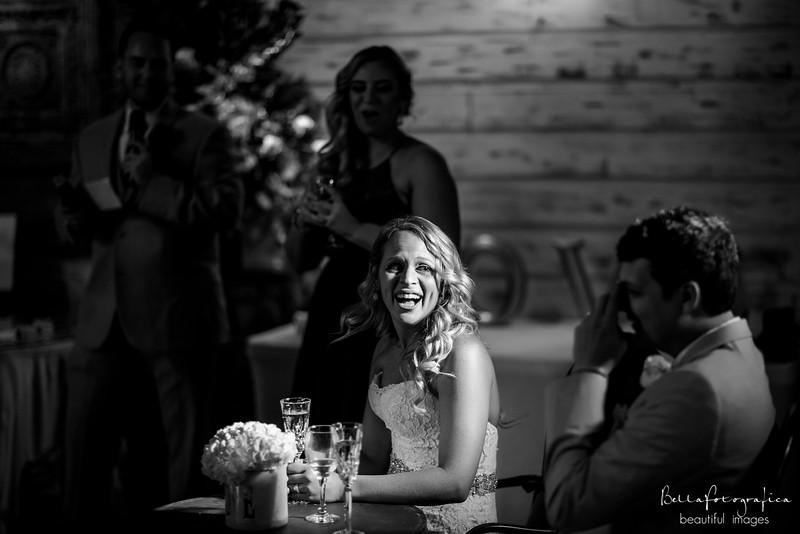 Briana-Trace-Wedding-2016-365