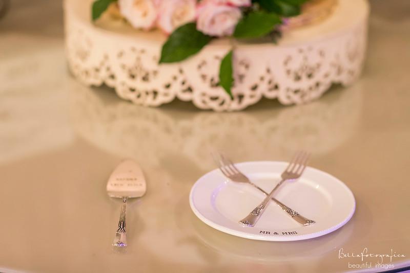 Briana-Trace-Wedding-2016-306