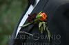 BridgetBen-Wedding-088