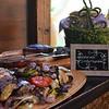 grilled veggies bridget and danielle  06-18-16 Wedding steak DSC_0855