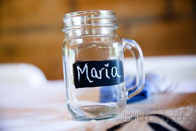 Brittany-Chris-Wedding_B0075