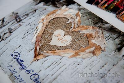 Brittany-Chris-Wedding_B0240
