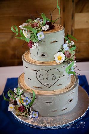 Brittany-Chris-Wedding_B0500