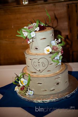 Brittany-Chris-Wedding_B0491