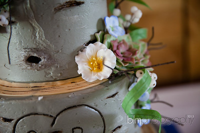 Brittany-Chris-Wedding_B0509