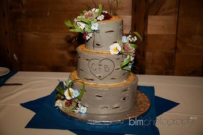 Brittany-Chris-Wedding_K0931