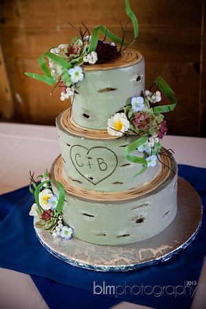 Brittany-Chris-Wedding_B0496