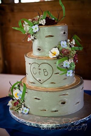 Brittany-Chris-Wedding_B0480