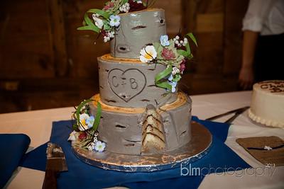 Brittany-Chris-Wedding_B2177