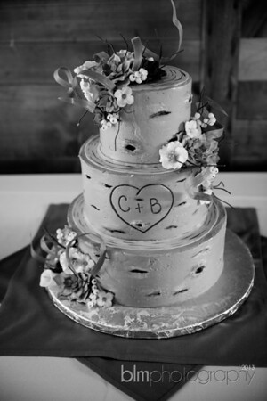Brittany-Chris-Wedding_B0504