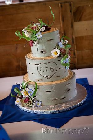 Brittany-Chris-Wedding_B0476