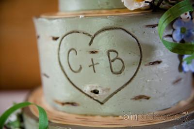 Brittany-Chris-Wedding_B0494