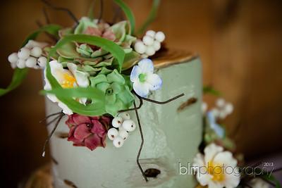 Brittany-Chris-Wedding_B0485